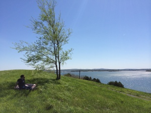 Spectacle Island on Mother's Day, 2014